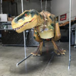 American Dinosaur Events Roxy The Trex